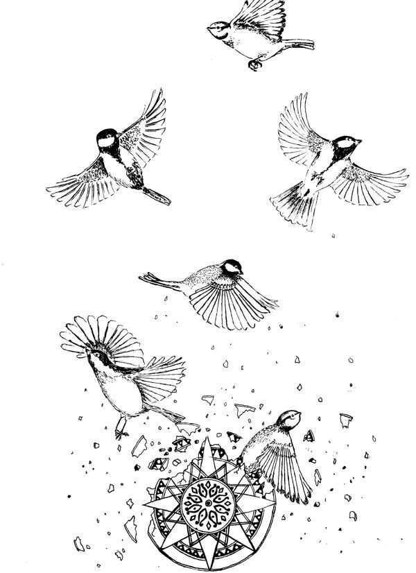 Birds Tattoos Illustrations: Family Birds Breaking Free From Tradition. #illustration