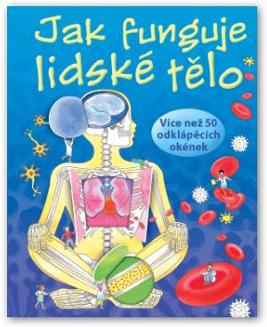 Jak Funguje Lidské Tělo Human Body Systems Flap Book Best Books For Kindergarteners