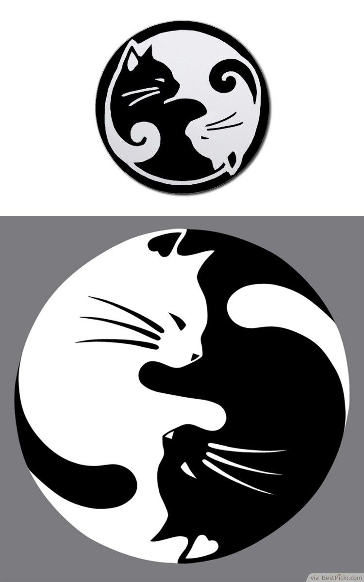 Yin Yang Lucky Cat Tattoo This Would Be Nice With A Watercolor
