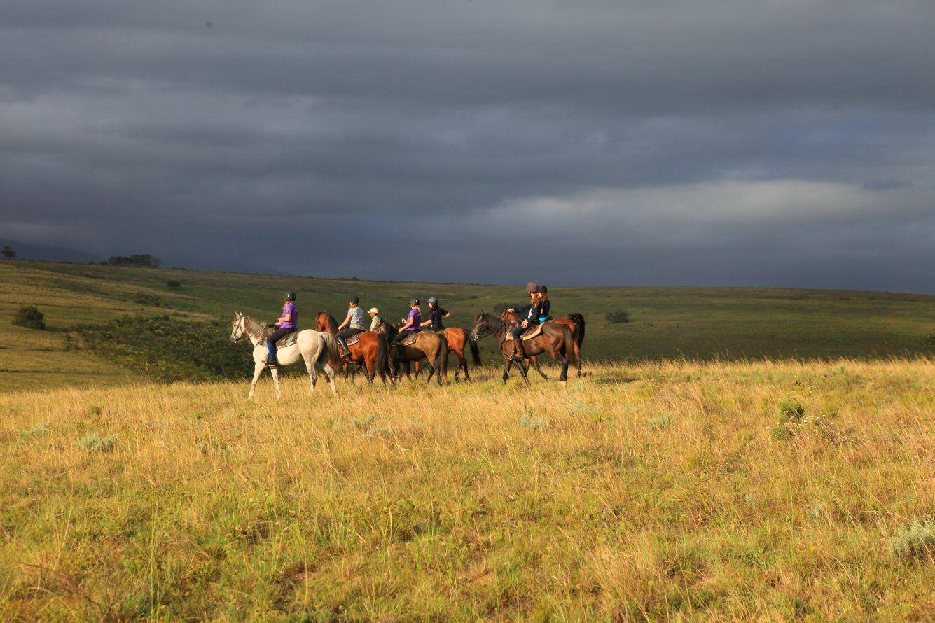 Equine Adventure Safaris at Botlierskop horsebacksafari