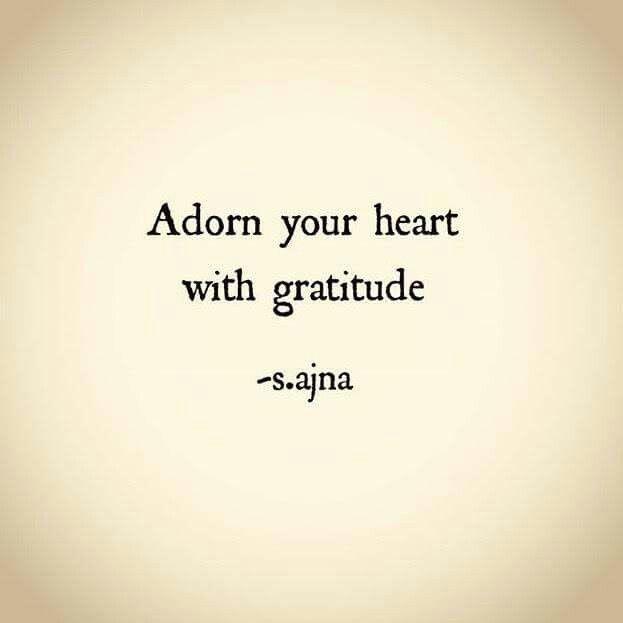 #quote #gratidao #gratitude
