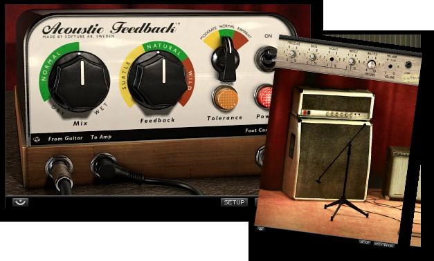 Acoustic Feedback Acoustic Guitar Amp Music Gear