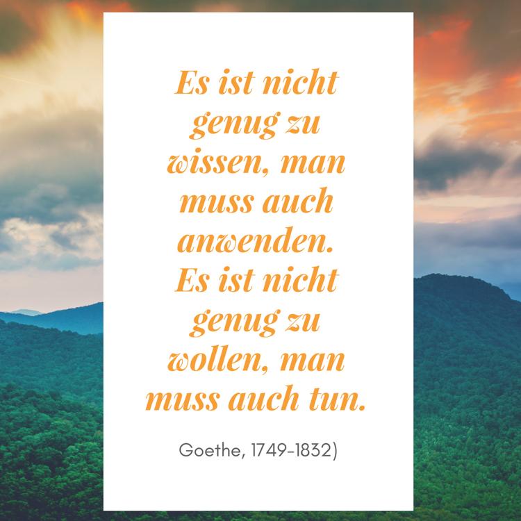 Es Ist Nicht Genug Zu Wissen Man Muss Auch Anwenden Es Ist Nicht Genug Zu Wollen Man Muss Auch Tun Goethe Beruhmte Zitate Zitate Geflugelte Worte