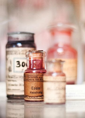 pharmacy museum by bubbo.etsy.com, via Flickr