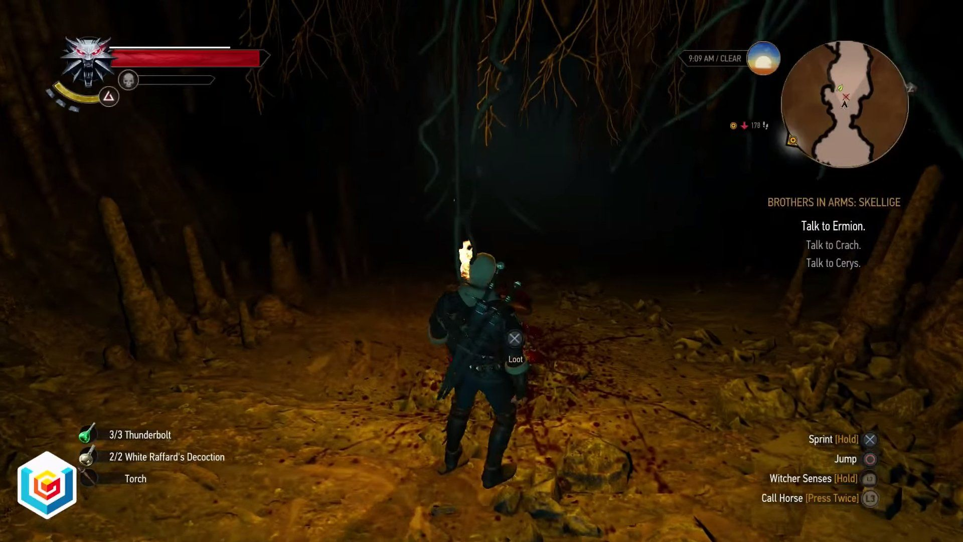 The Witcher 3 Wild Hunt Trail Of Echoes Secondary Quest