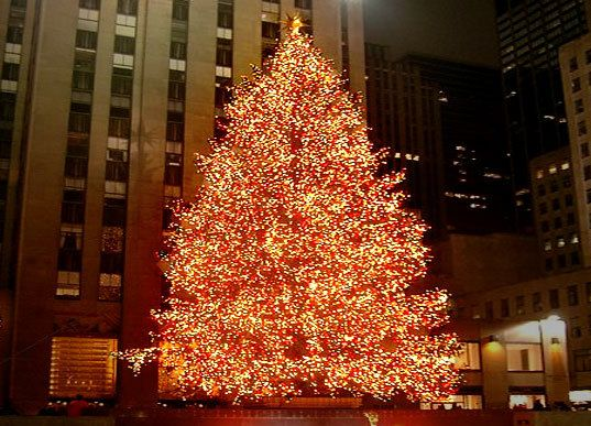 Rockefeller Center christmas tree Aerie FNO NYC Pinterest