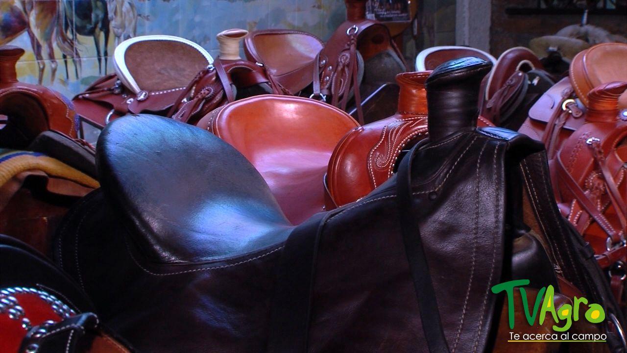 Cascos y Riendas Capítulo 8: sillas para caballos.
