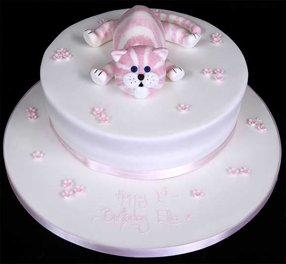 8adorablebabycatcakekitten meow pretty icy Gatos