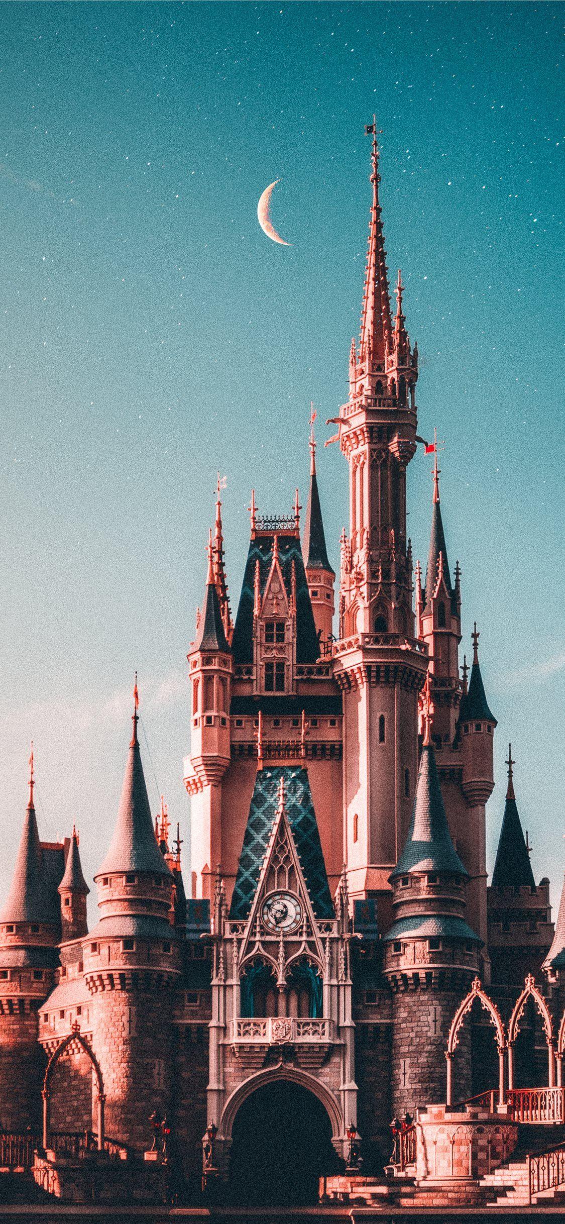 blue and beige Disneyland castle iPhone X Wallpapers in