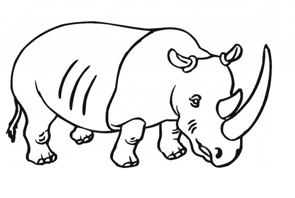 Free Printable Rhinoceros Coloring Pages For Kids Coloring Pages For Kids Coloring Pages Animal Coloring Pages