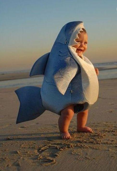 Suddenly I'm not so scared of sharks