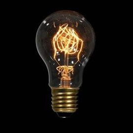 Danlamp Carbon De Luxe Light Bulb
