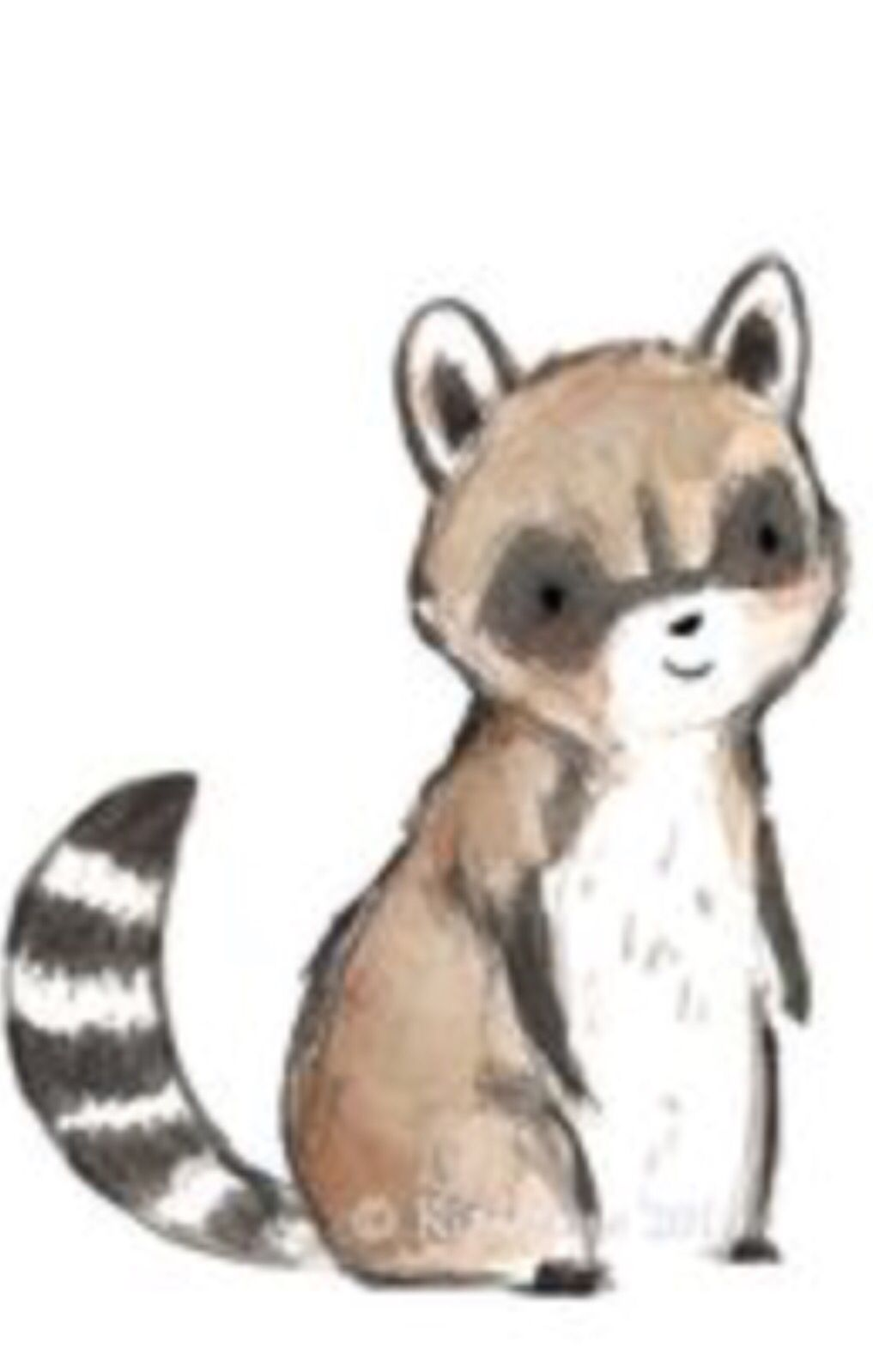 Cute Raccoon Drawing Art Easy Raccoon Drawing Cute Raccoon Drawings