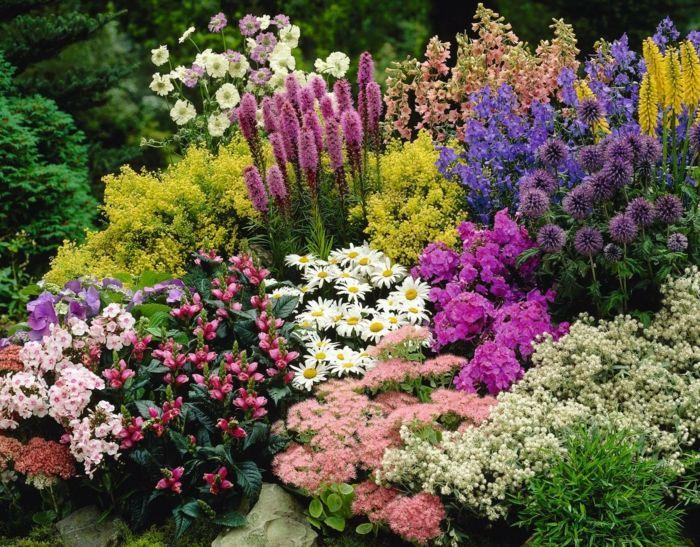 vertikaler garten mit lavendel und andere blumen in fröhlichen, Garten ideen