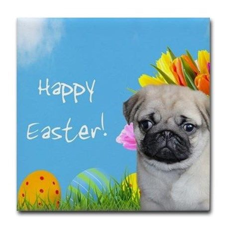 "Happy Easter Pug Dog Tile Coaster Square coaster measuring 4.25"" x 4.25"", 1/6-inch thick  #easter #pug #giftideas #pugs #dog #pet #holiday #tiles #coasters #homedecor #animal #puppy"