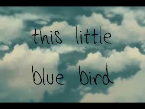 Christina Perri Bluebird Lyrics On Screen And Description
