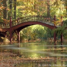 bridge at william and mary college - Google Search