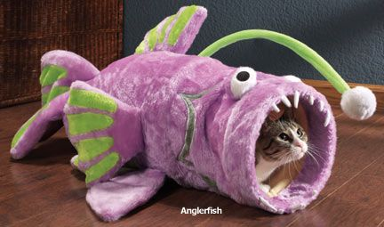 Image result for fish cat bed