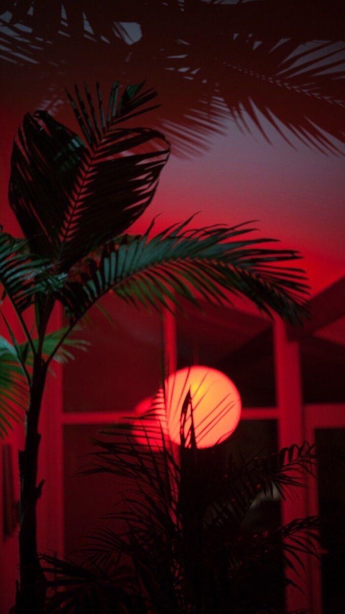 Color Pallet Aesthetic Desktop Wallpaper Red Aesthetic Aesthetic Backgrounds