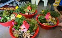 fairy gardens ideas