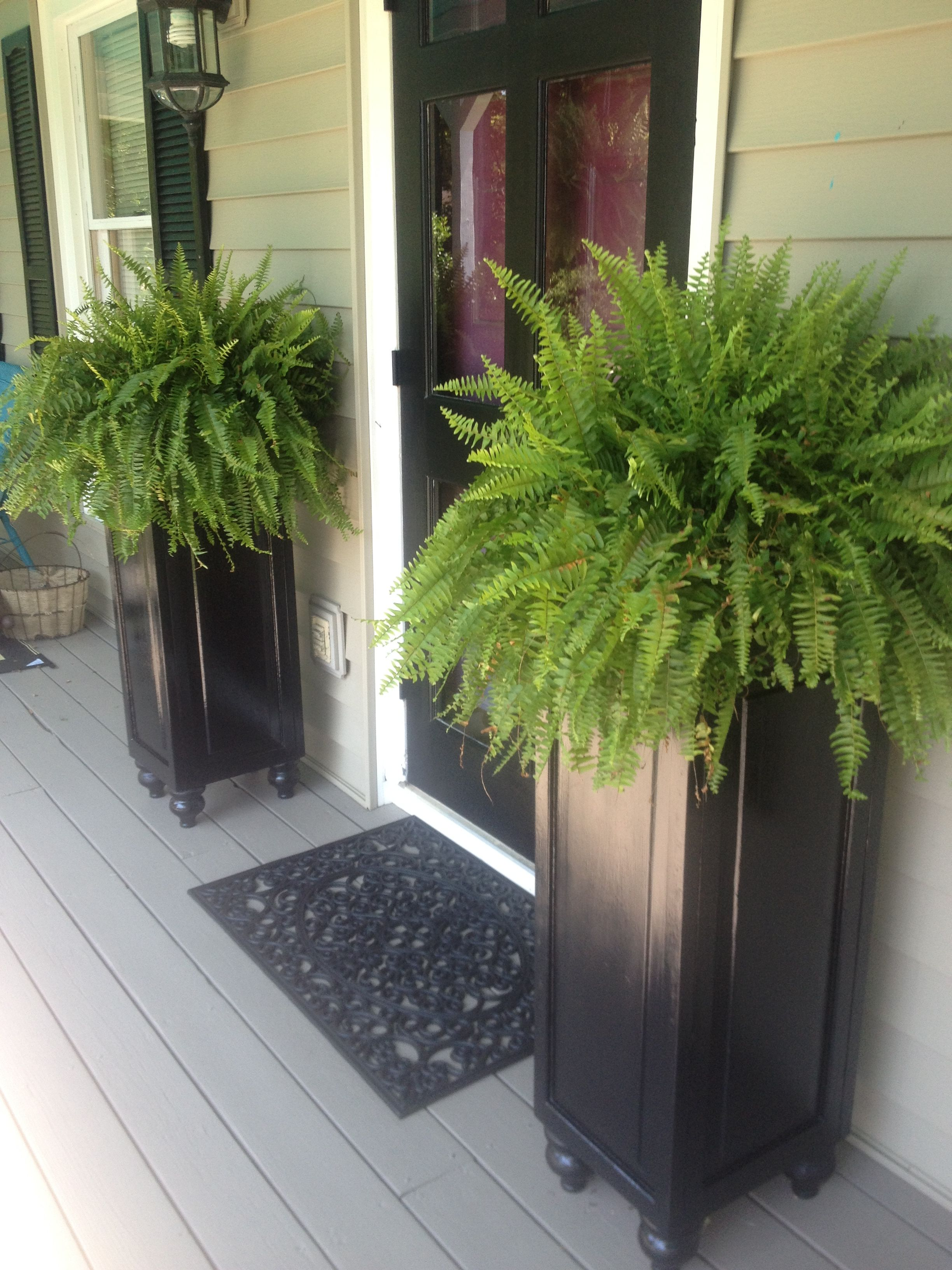 Fern Stands repurposed from old bi-fold closet doors