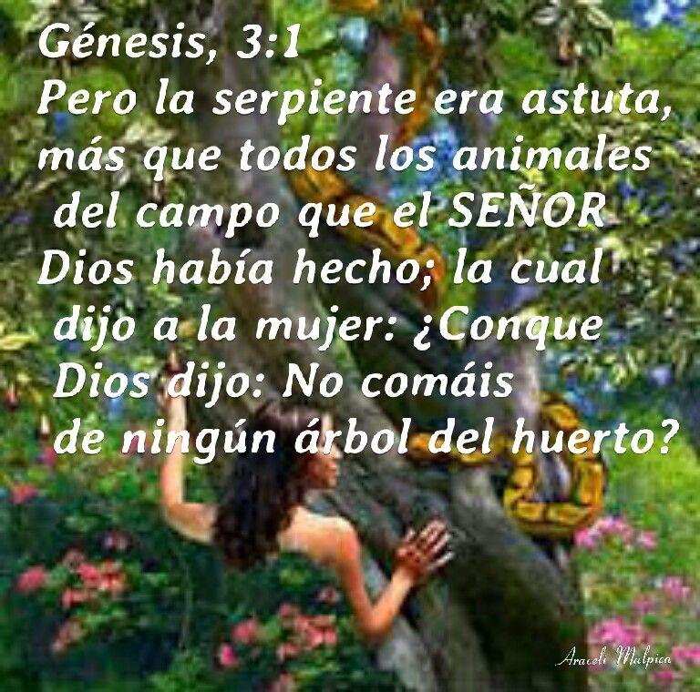 Genesis 3 1 Genesis 3 Genesis 3 1