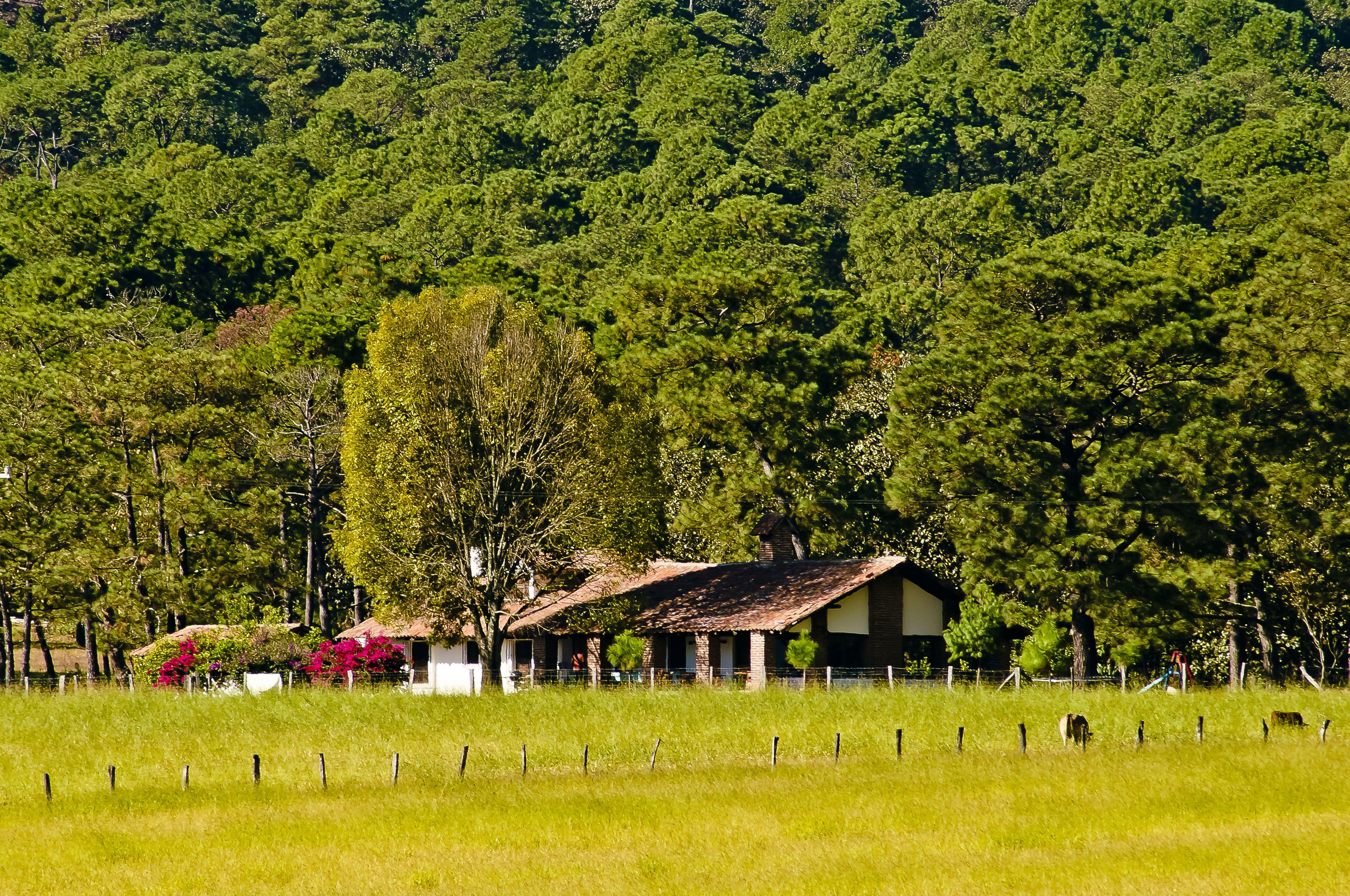 Rancho Chisguete Jalisco México
