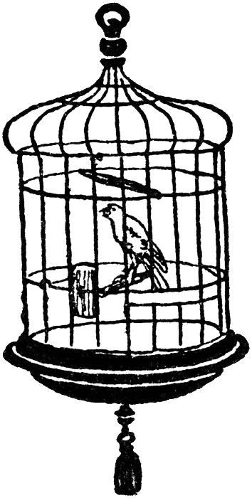 free vintage digi stamp bird in a cage png 354 700 pixels digital rh pinterest com