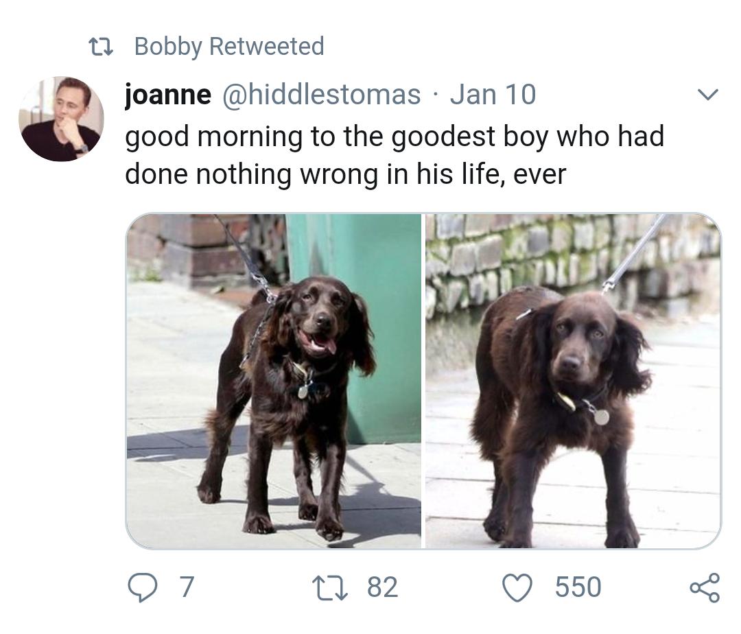 bobbyhiddleston on Twitter | Life, Boys who, Good morning