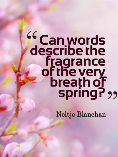 10 lovely quotes about springtime spring
