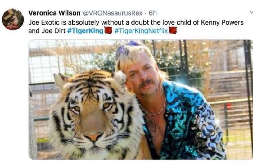 Twenty Eight Memes From Tiger King Our New Favorite Show Funny Tiger King Meme Funny Memes