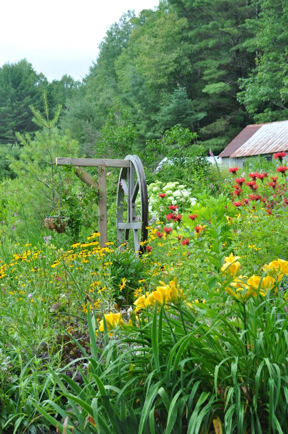 Three Dogs in a Garden: Marnie's Garden, Part 2: Discovering a Passion for Gardening