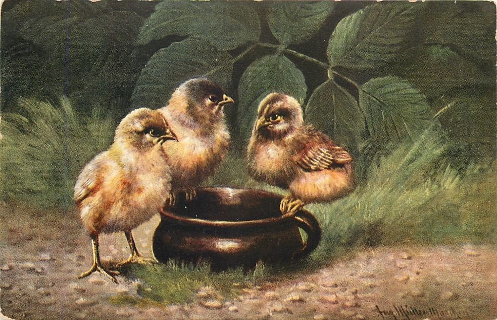 German Artist August Muller~Three Bird Chicks on Brown Coffee Mug~Tea Cup~1908