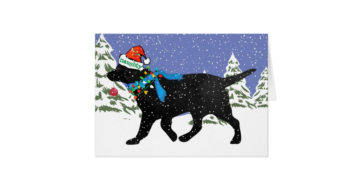 Christmas Black Lab Naughty Card Black Labs, Labs And Christmas ...