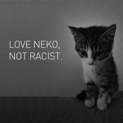 Nati racist Kitten