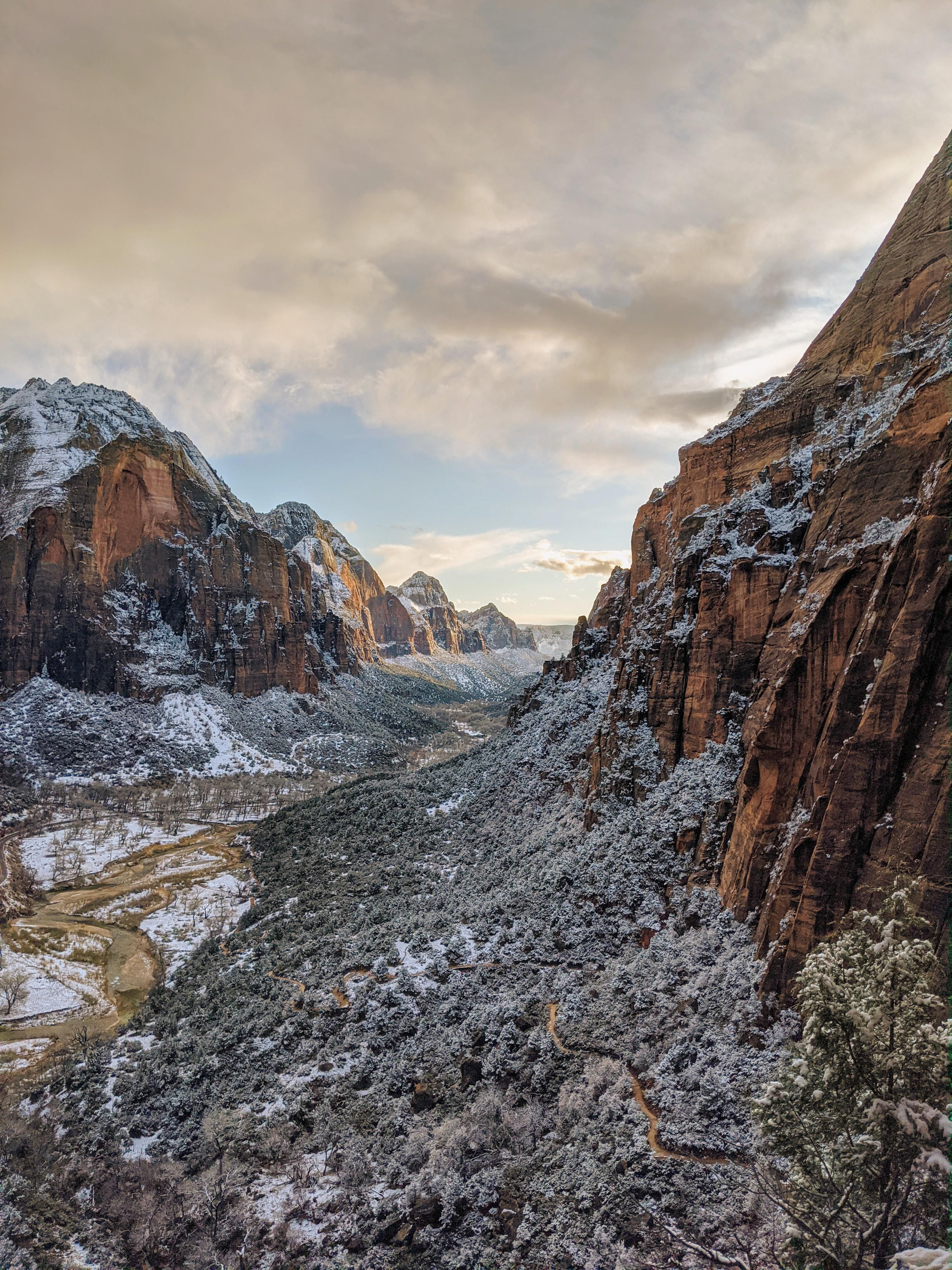 Zion National Park with a fresh dusting of snow this last Winter #nature #teesylvania #photos #amazingworld #world #amazingphotography #naturephotography #photography #incrediblephotos Check out teesylvania.com to find out how you can support the forests with style!
