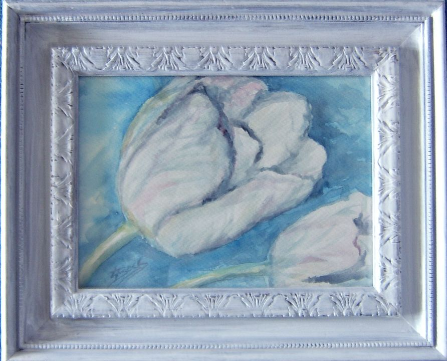 """""""White Tulip"""" Watercolor. Available as Prints, Note Cards and Magnets."""