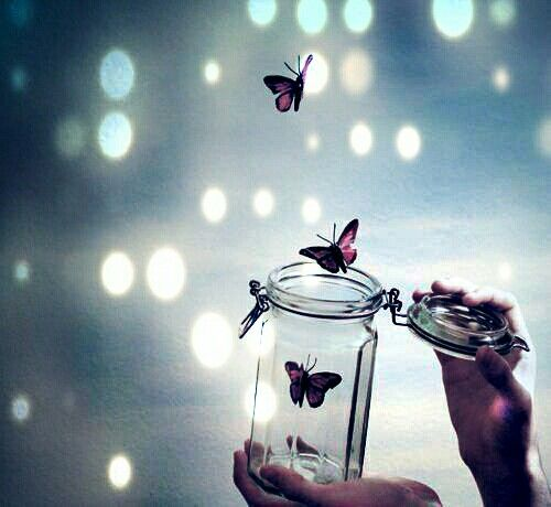 Free Yourself And Try To Fly Butterfly Wallpaper Cute Cartoon Wallpapers Cute Wallpapers