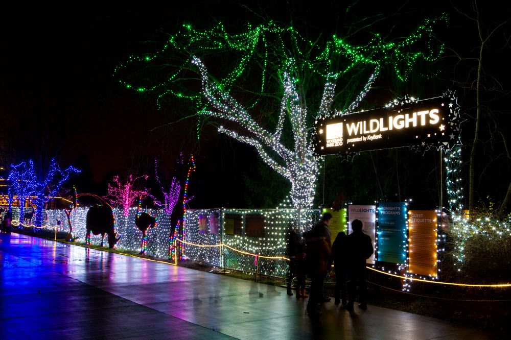 Best Holiday Light Displays Near You Best christmas