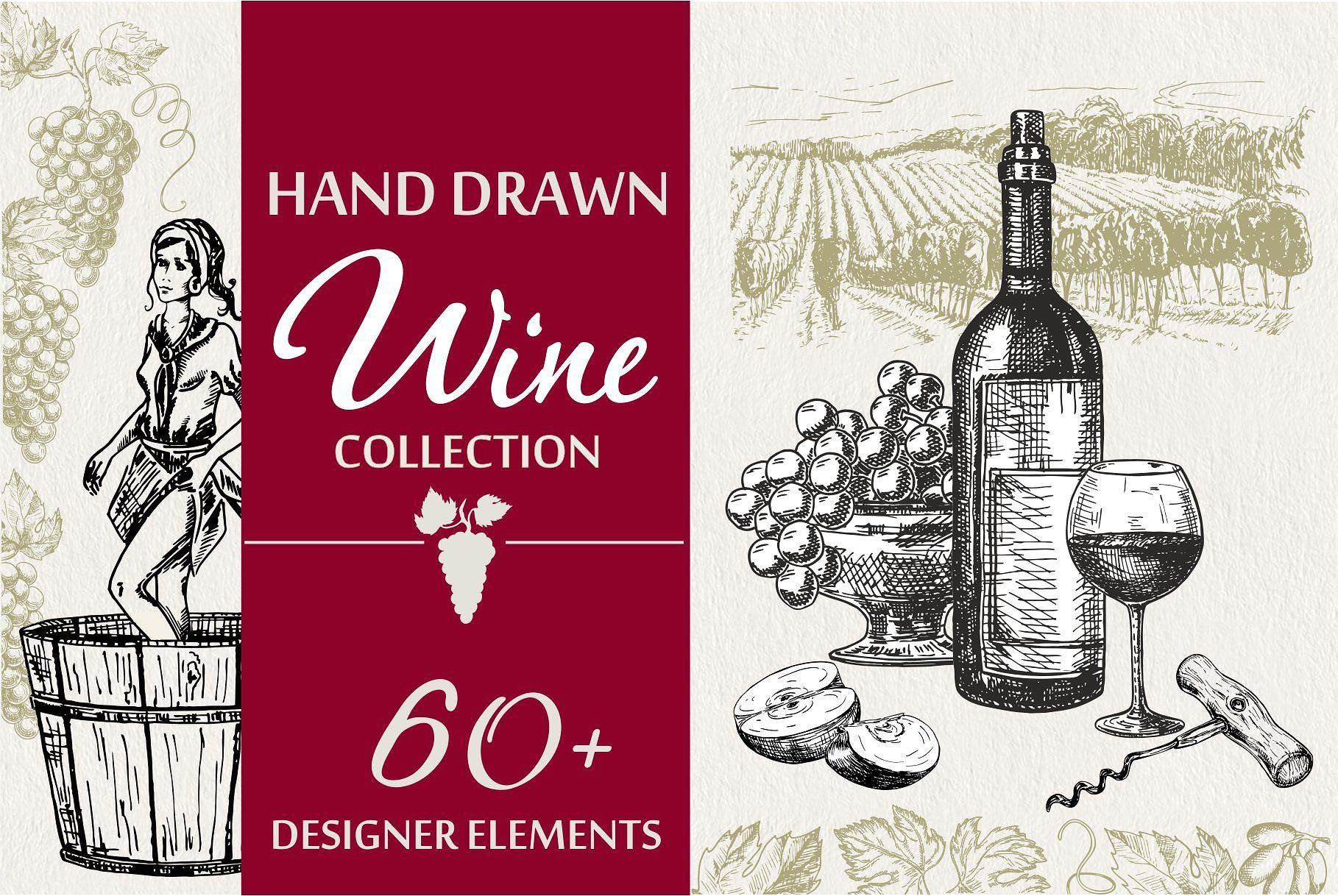 Wine Grapes Illustations Set Wine Bottle Label Design Bottle Label Design How To Draw Hands