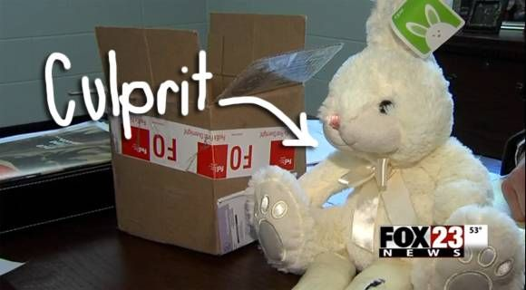 Woman Is Arrested For Having An Easter Bunny — It Was Stuffed With $30,000 Of Meth!