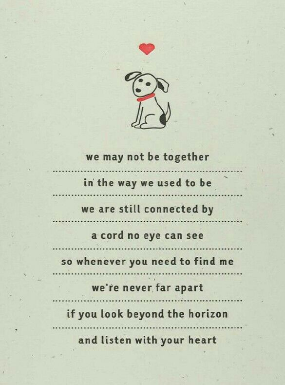 ♡☆ We May Not Be Together In The Way We Used To Be We Are Adorable Loss Of A Pet Quote