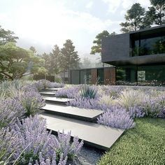 Wiktor Kłyk on Instagram  ZEN GARDEN  New version with mixed plants architecture Aedes Stydio Visualization made in lumionpolska Wiktor Kłyk on Instagram  ZEN GARDEN  New...