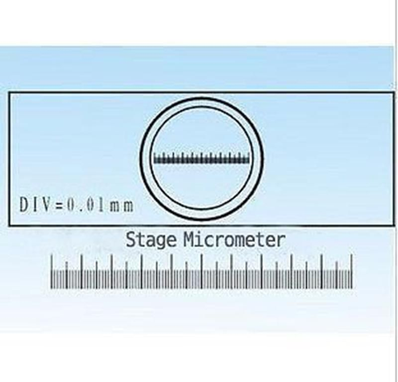 0 01mm Microscope Stage Micrometer Calibration Slide With Measurement Scales For Stereo Microscope Yesterday S P Stereo Microscope Micrometer Microscope Stage