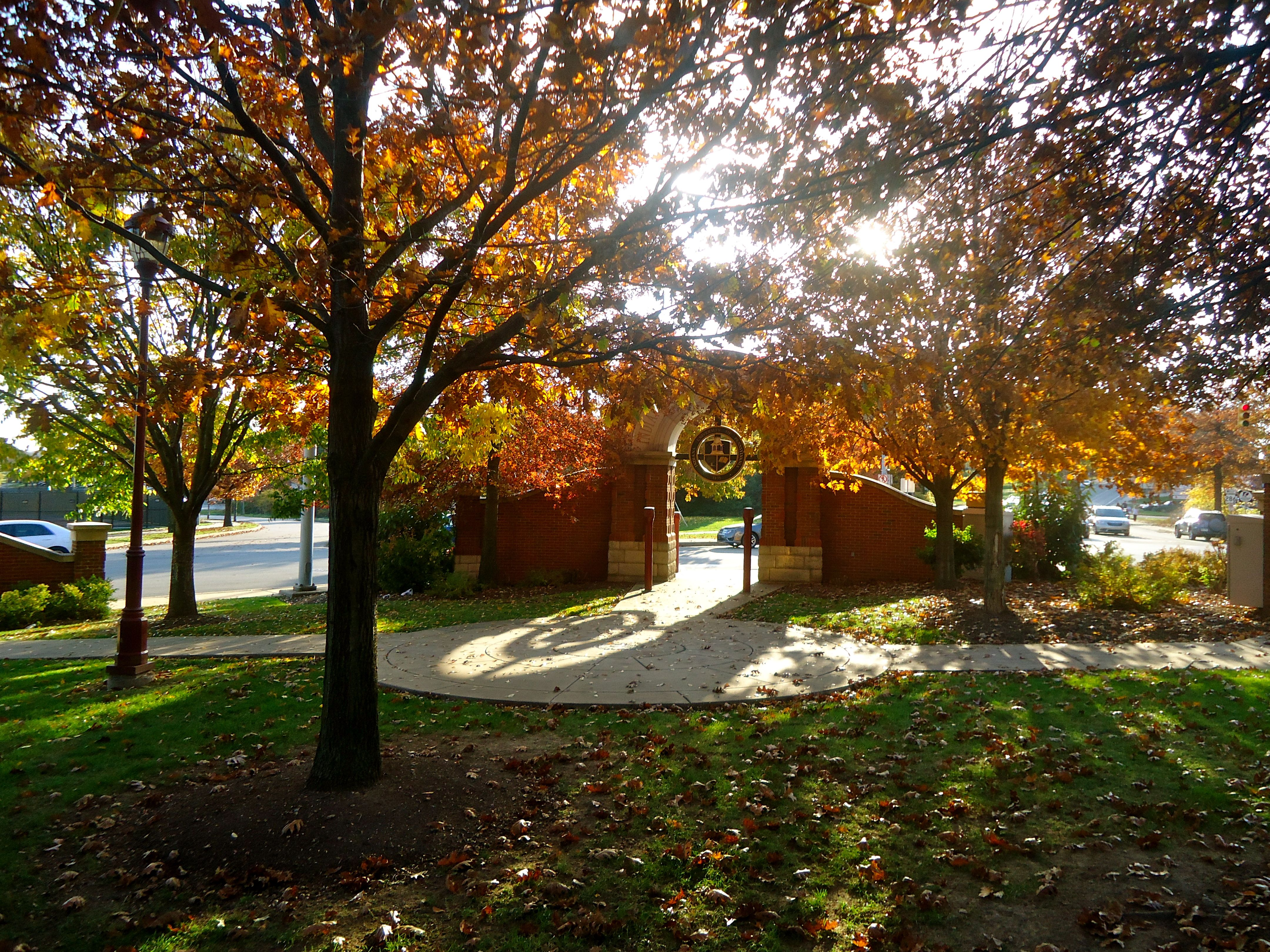 Beauty of IUP #Fall #IUP | Indiana university of pennsylvania, Places to  visit, Favorite places