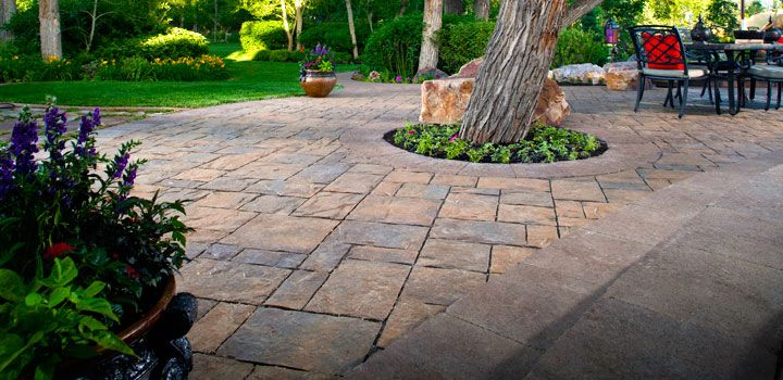 Pavers Around Tree Landscaping Around Trees Backyard Makeover Landscaping Near Me