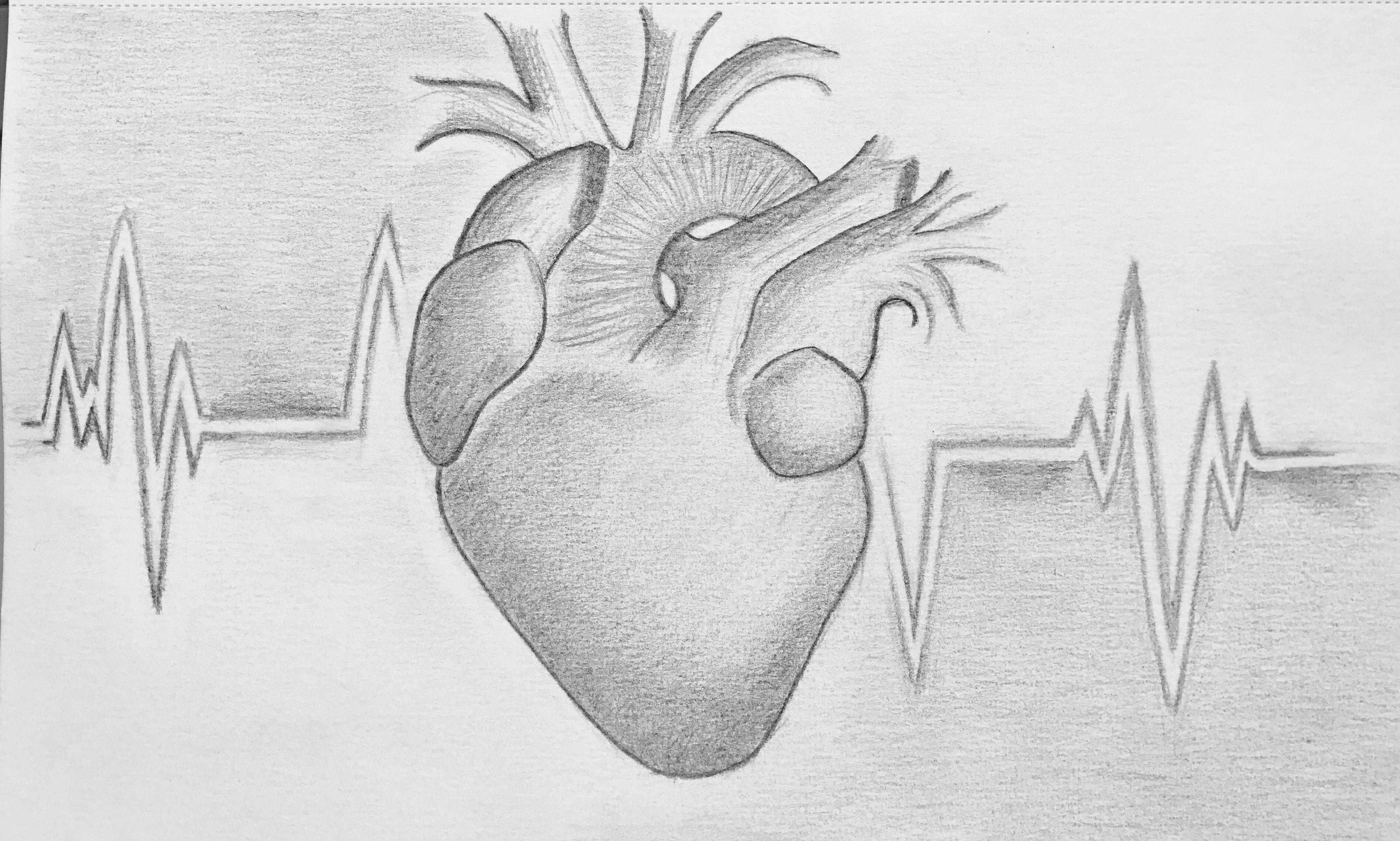 Herz, Herzzeichnung, Zeichnung, Herzschlag