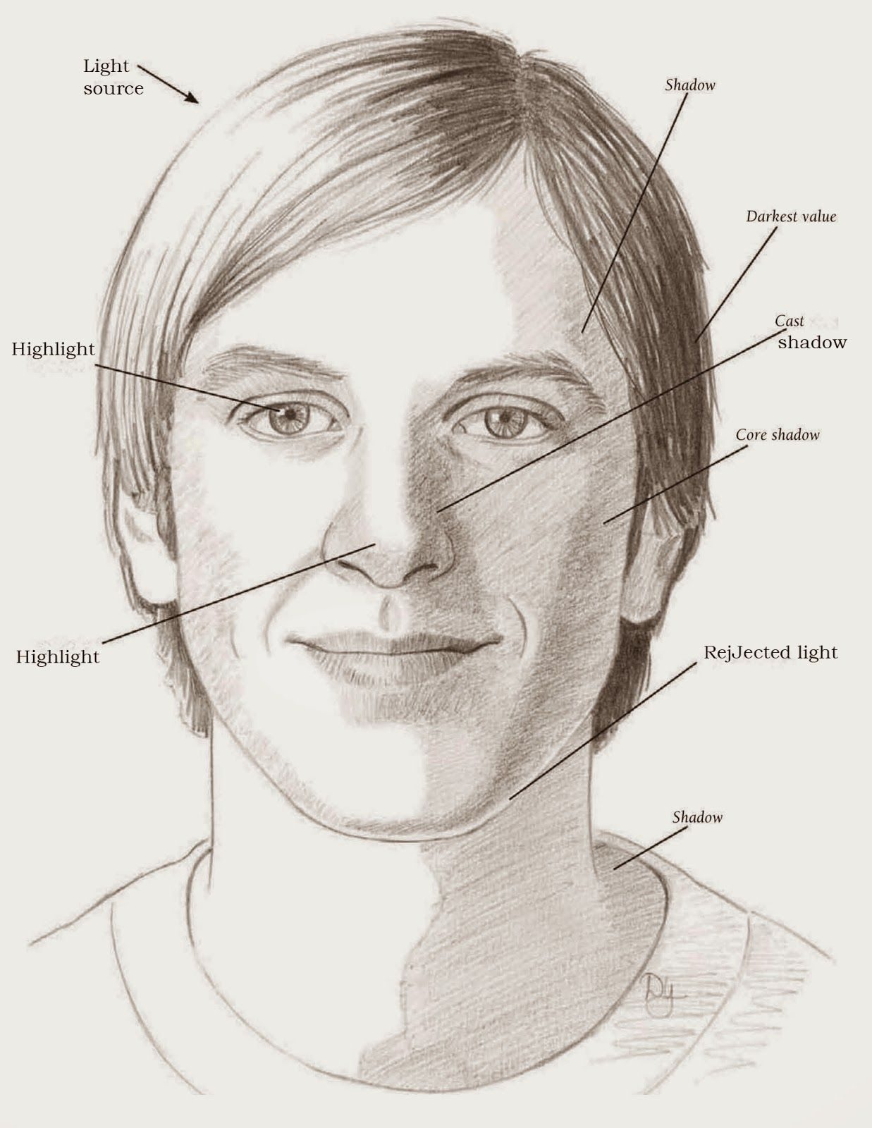 Learning The Planes Of The Face