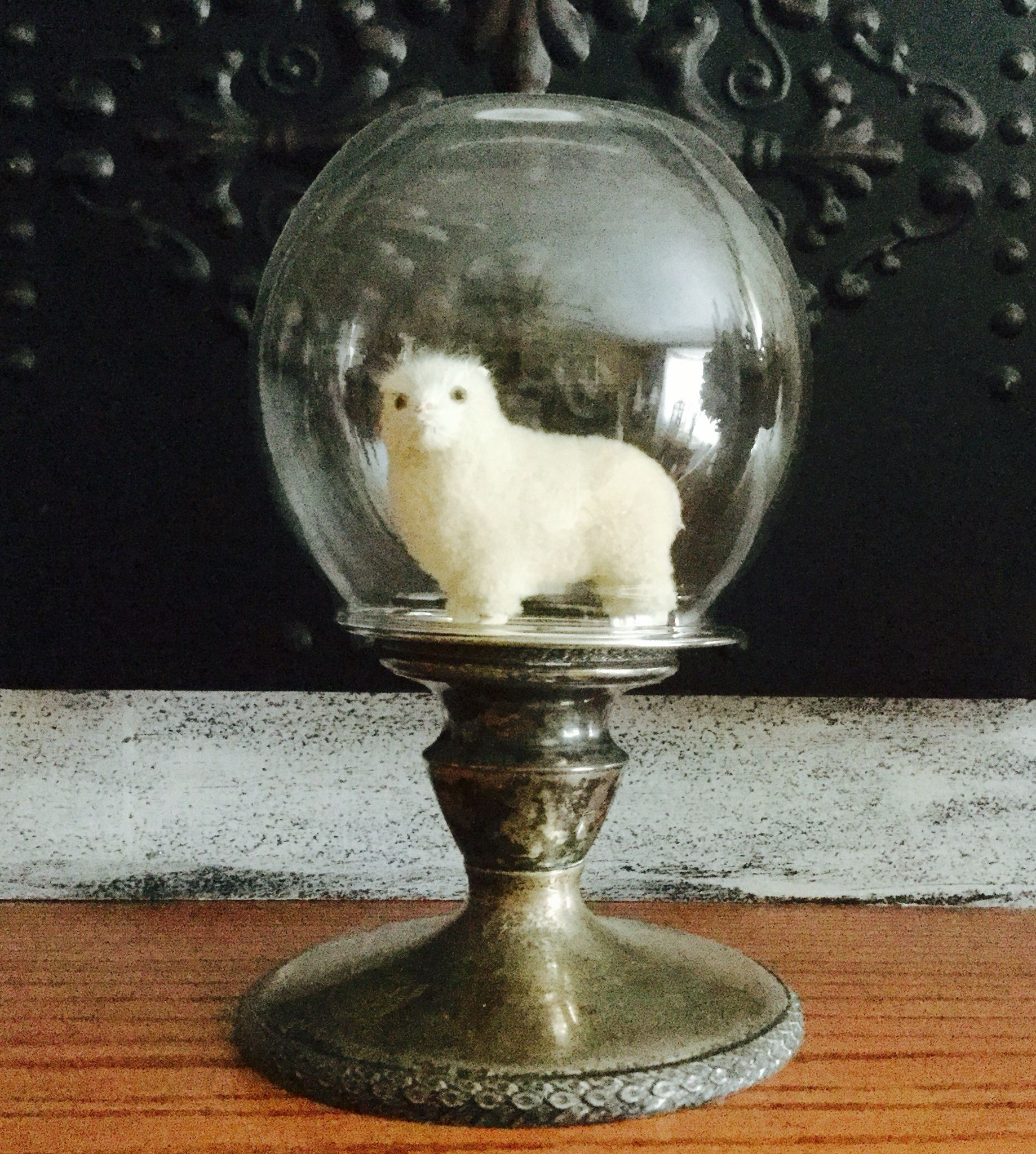 Sheep under glass by me Deb P