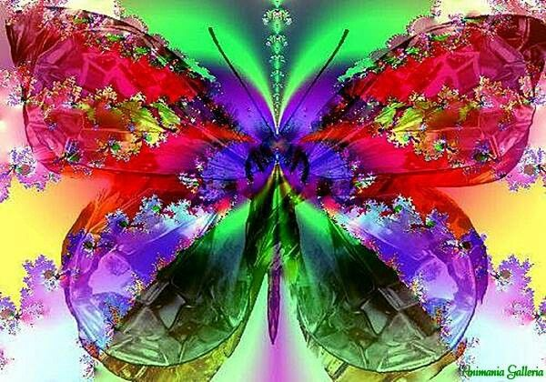 Colors With Images Rose Gold Wallpaper Colorful Butterflies
